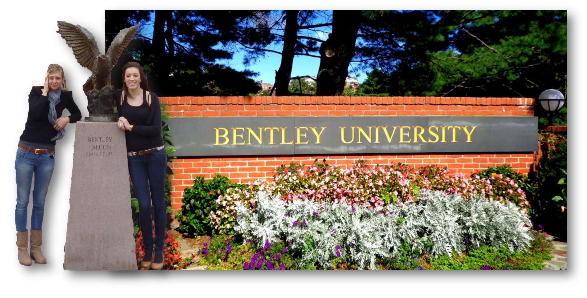 bentley university athletics logo bentley cover. Cars Review. Best American Auto & Cars Review
