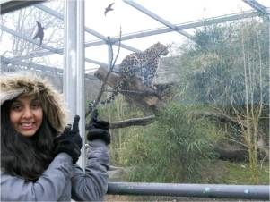 zoo lyon