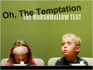 "The ""marshmallow studies"