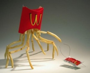 McDonald´s and earthworms
