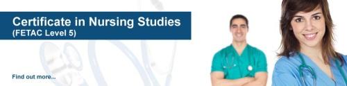 nursing studies