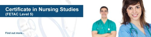 nursing studies