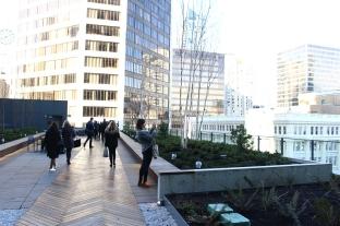 Telus garden